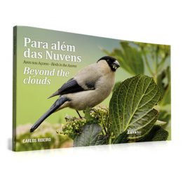 Para Além das Nuvens – Aves nos Açores / Beyond the Clouds – Birds in the Azores