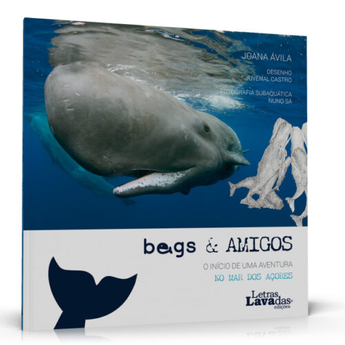 Begs & Amigos - O Início de uma Aventura no Mar dos Açores