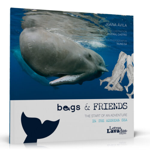 Begs & Friends - The start of an adventure in the azorean sea